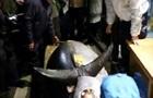 Гигантский голубой тунец  ушел с молотка  в Токио за 70 тысяч долларов