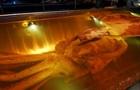 Зачем ученые разморозили колоссального кальмара? - репортаж ВВС