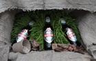В Украине появилось первое ЭКО пиво