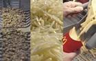 Руйнівники легенд  розкрили секрети картоплі-фрі у McDonald s