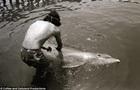 Мужчина год занимался сексом с дельфином, который сам его соблазнил