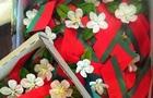 В Беларуси к 9 мая георгиевские ленточки заменят на цветы