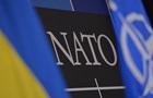 НАТО и Украина признали неготовность Киева к членству в альянсе