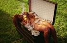 Рианна снялась обнаженной в новом клипе Bitch Better Have My Money