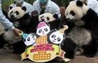 Единственные панды-тройняшки отметили первый день рождения