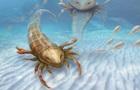 Ученые нашли останки  короля  морей палеозоя
