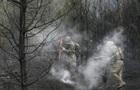 З явилися нові фото і відео наслідків пожежі під Києвом