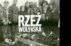 Медведчук: Резолюция польского Сейма - ответ на героизацию ОУН-УПА