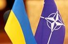 Медведчук: Украинцев трудно убедить в необходимости вступления в НАТО
