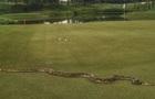 Турнир по гольфу прервал двухметровый питон