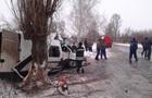 На Луганщині маршрутка врізалася в дерево, десять постраждалих