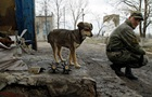 За добу у зоні АТО поранили одного військового - штаб