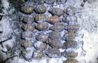 У Житомирській області знайшли схованку з гранатами