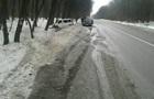 На Львовщине микроавтобус слетел в кювет, пятеро пострадавших