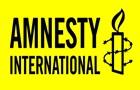 Amnesty: В 2016 году использовался  язык вражды  в политике