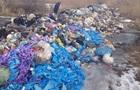 Нелегальный вывоз мусора из Львова обнаружили в Полтавской области
