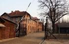 Акционисты убили овцу у Освенцима и разделись