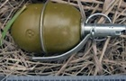 В Запорожье на детской площадке нашли боевую гранату