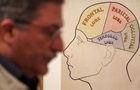 Вчені знайшли спосіб поліпшення пам яті