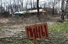 За год на минах подорвался 141 гражданский - ОБСЕ