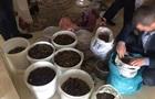 В Ровенской области изъяли янтарь на 2 млн грн