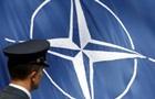 Киев отдал НАТО доклад о связях РФ с террористами