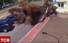 Появилось видео масштабного прорыва трубы в Киеве