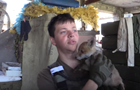 У бойцов АТО появился пушистый талисман – лиса