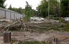 Ураган у Казахстані: загинули троє