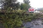 Непогода в Украине: Ураган, ливни и град