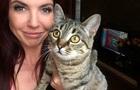 Киевлянин получил тюремный срок за избиение кота