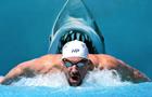Олимпийский чемпион-пловец сразился с белой акулой