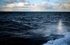 Біля берегів Бельгії знайшли затонулий човен часів Першої світової