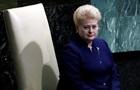 Грибаускайте: Россия репетирует сценарии нападения