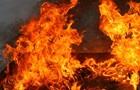 В России на автостоянке сгорели почти два десятка маршруток