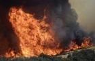 Пожары в Калифорнии: ущерб от разрушений превысил $1 млрд