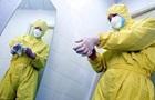 Украинцам советуют не ехать на Мадагаскар из-за чумы