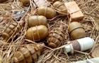 На Донбассе в лесополосе нашли 10 тысяч патронов и взрывчатку