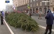 На Евромайдан привезли 14-метровую живую елку