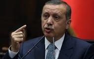 Турция видит Украину целостной и независимой – премьер Эрдоган