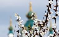 На выходные в Украине ожидается теплая и солнечная погода