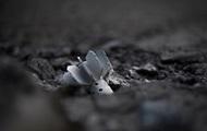 В Луганске снаряд пробил стену лицея - мэрия