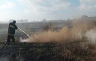 В Киевской области продолжают гореть торфяники