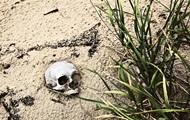 Песочные люди. Жизнь в заполярной деревне, утопающей в песках