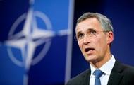 НАТО поддержал Турцию в ситуации со сбитым Су-24