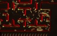 У гру Pacman зіграли одноклітинними організмами