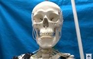 Скелет навчили рухатися завдяки штучним м'язам