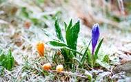 В выходные на Николаевщине синоптики обещают теплую погоду