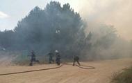 У двох областях України горять ліси