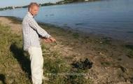 Украинец переплыл Дунай, чтобы найти работу в Румынии